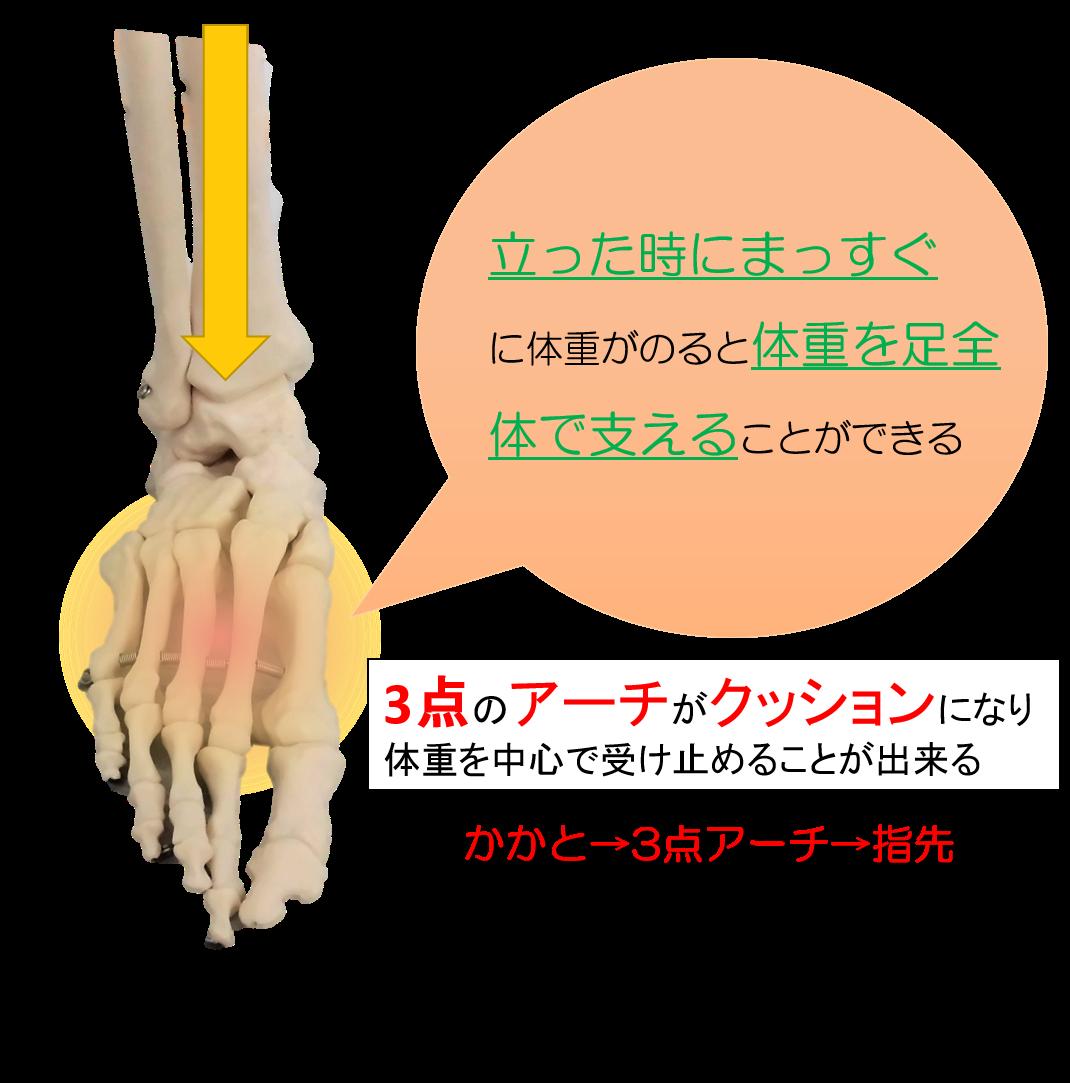 gaihanboshi-seijounajusin